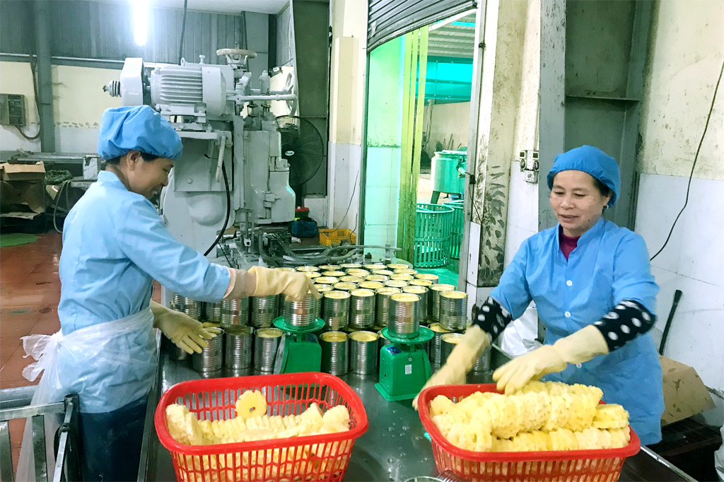 Ninh Binh consistent with export target of 2.2 billion USD in 2020