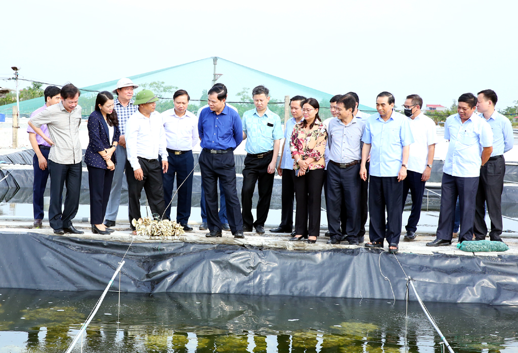 Minister of Agriculture and Rural Development works with Ninh Binh leaders