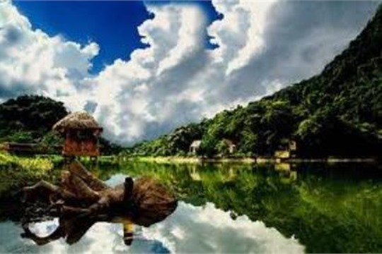 The largest and first Vietnam s national park Cuc Phuong National Park