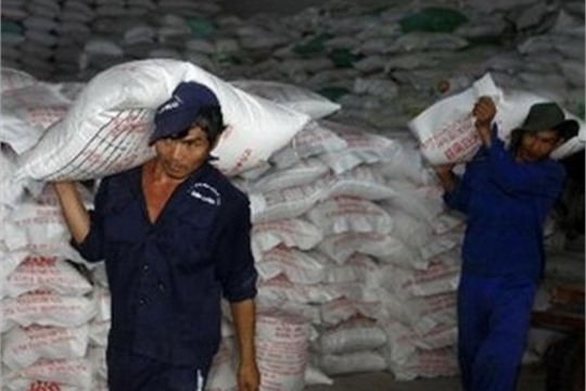 Vietnam s rice export reaches over 4 6 mln tonnes