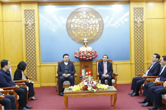 Ninh Binh s leader receives delegation of Iranian Embassy