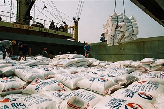 Vietnam exports 3 9 million tonnes of rice in seven months