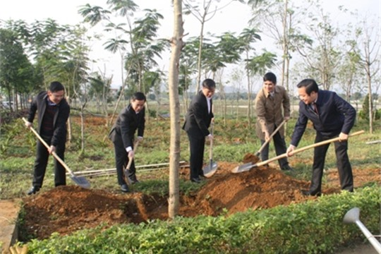 Ninh Binh plants over 243 hectares of forest in 8 months