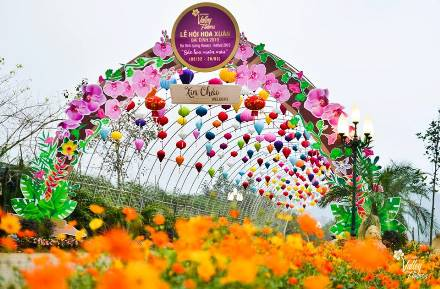 Bai Dinh Flower garden open to visitors during Tet holiday