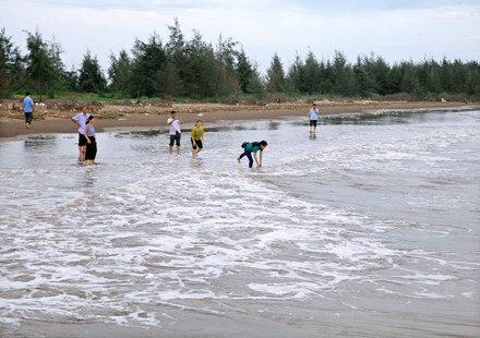 New marine ecotourism site to take shape in Kim Son