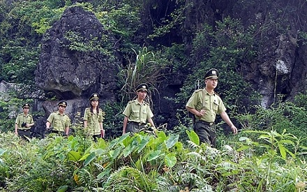 Ninh Binh sets good example in forest protection