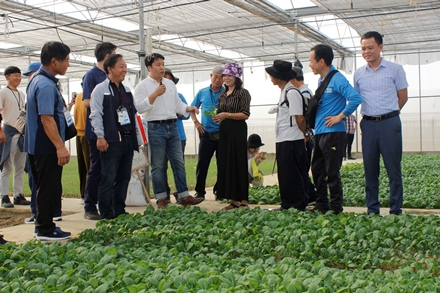 RoK farmers study agriculture production in Ninh Binh