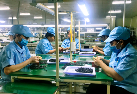 Ninh Binh likely to exceed budget target by 50.8pct this year